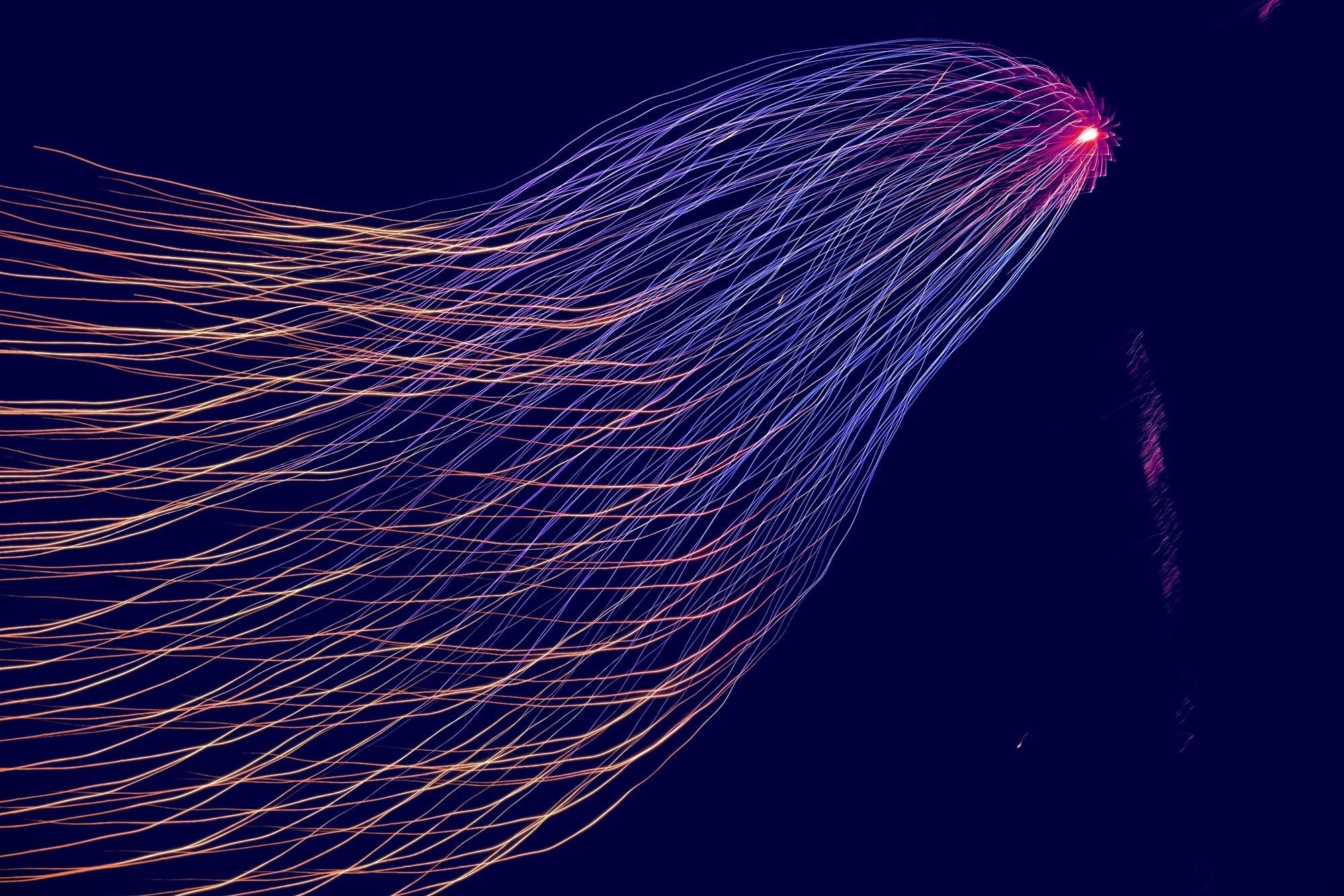 Whitepaper: Machine Learning Ecosystem 101